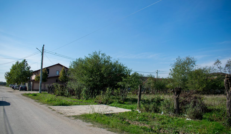 teren-balaceanca-1439-mp-3